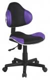 qzy-g2b紫